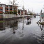 RN Volunteers Needed in Puerto Rico